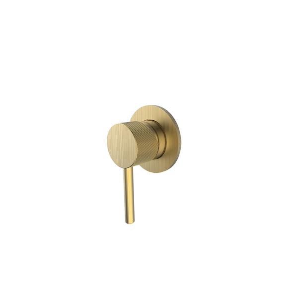 Εικόνα από Μίκτης Εντοιχισμού 1 Εξόδου Armando Vicario Industrial 512050-201 Brushed Gold